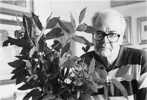 Giuseppe Bonaviri (poeta e scrittore)